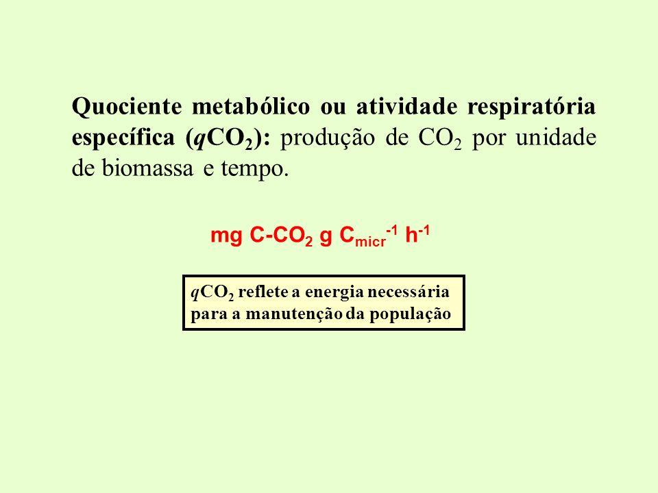 Quociente metabólico ou atividade respiratória específica (qCO 2 ): produção de CO 2 por unidade de biomassa e tempo. qCO 2 reflete a energia necessár
