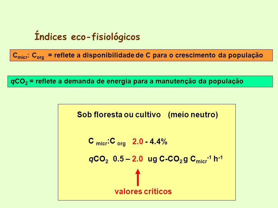 Índices eco-fisiológicos qCO 2 C micr :C org (meio neutro) 2.0 - 4.4% 0.5 – 2.0ug C-CO 2 g C micr -1 h -1 Sob floresta ou cultivo valores críticos C m