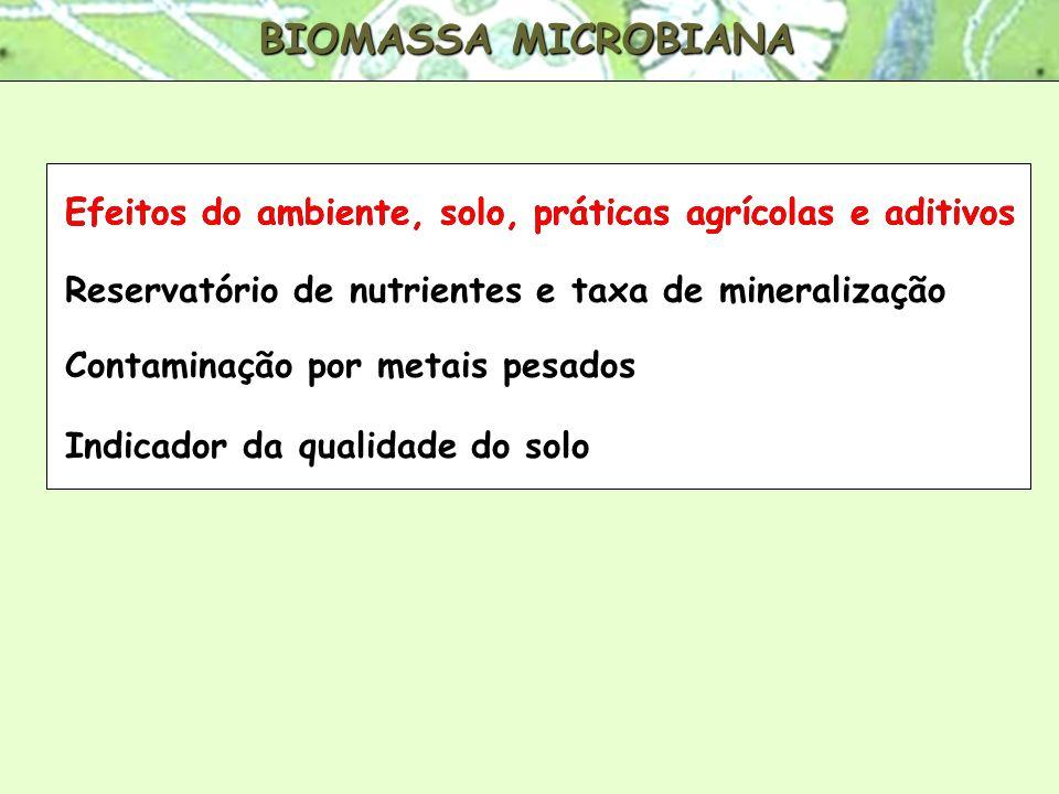 BIOMASSA MICROBIANA Efeitos do ambiente, solo, práticas agrícolas e aditivos Reservatório de nutrientes e taxa de mineralização Indicador da qualidade do solo Reservatório de nutrientes e taxa de mineralização Contaminação por metais pesados