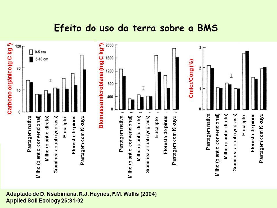 BIOMASSA MICROBIANA Efeitos do ambiente, solo, práticas agrícolas e aditivos Reservatório de nutrientes e taxa de mineralização Contaminação por metais pesados Indicador da qualidade do solo Contaminação por metais pesados