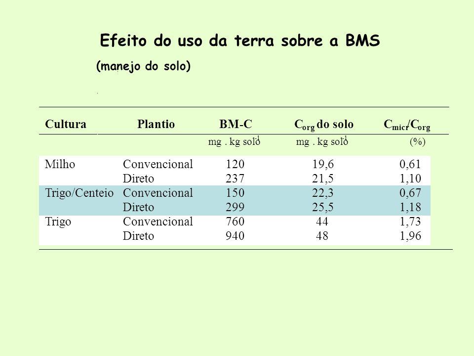 Efeito do uso da terra sobre a BMS CulturaPlantioBM-CC org do soloC micr /C org mg. kg solo mg. kg solo (%) MilhoConvencional12019,60,61 Direto23721,5