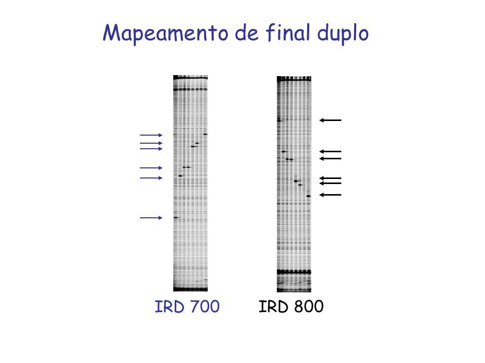 IRD 700 IRD 800 Mapeamento de final duplo
