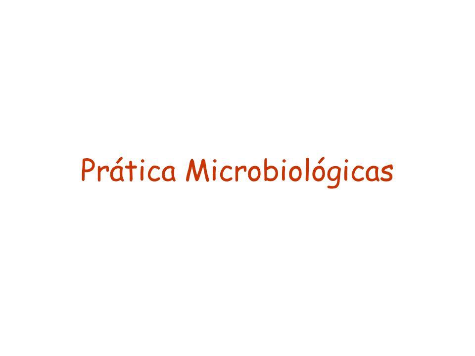 Prática Microbiológicas