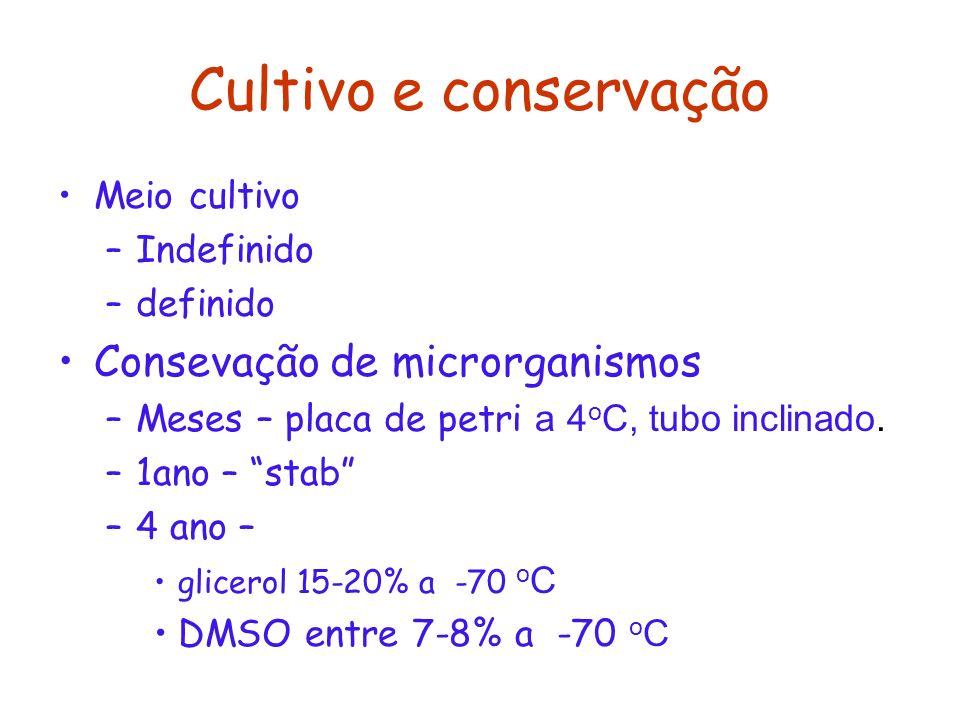 Cultivo e conservação Meio cultivo –Indefinido –definido Consevação de microrganismos –Meses – placa de petri a 4 o C, tubo inclinado. –1ano – stab –4