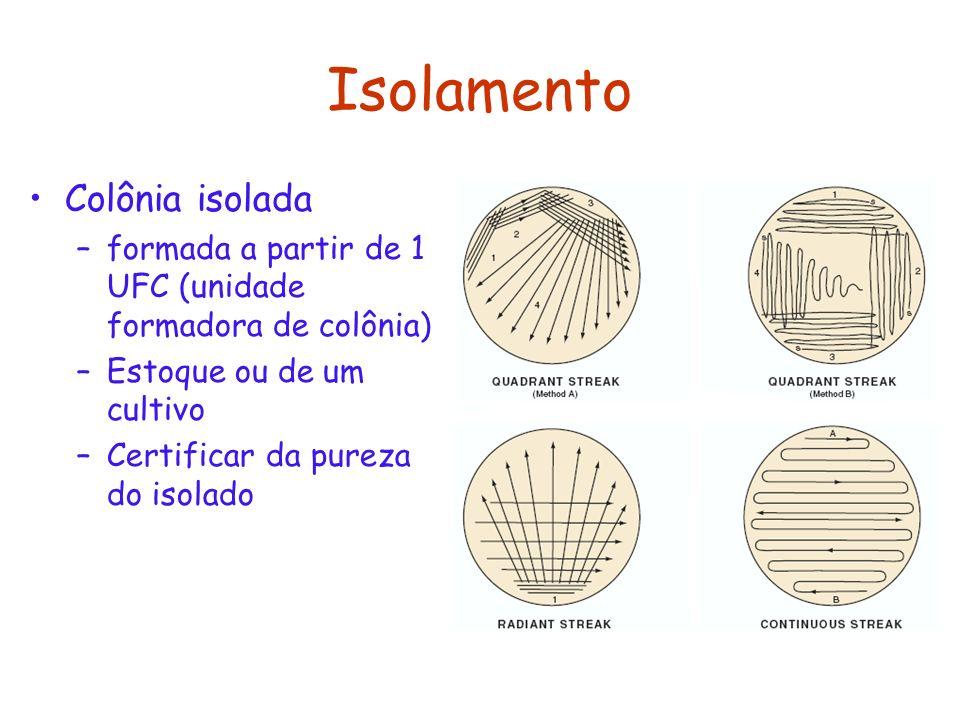 Isolamento Colônia isolada –formada a partir de 1 UFC (unidade formadora de colônia) –Estoque ou de um cultivo –Certificar da pureza do isolado