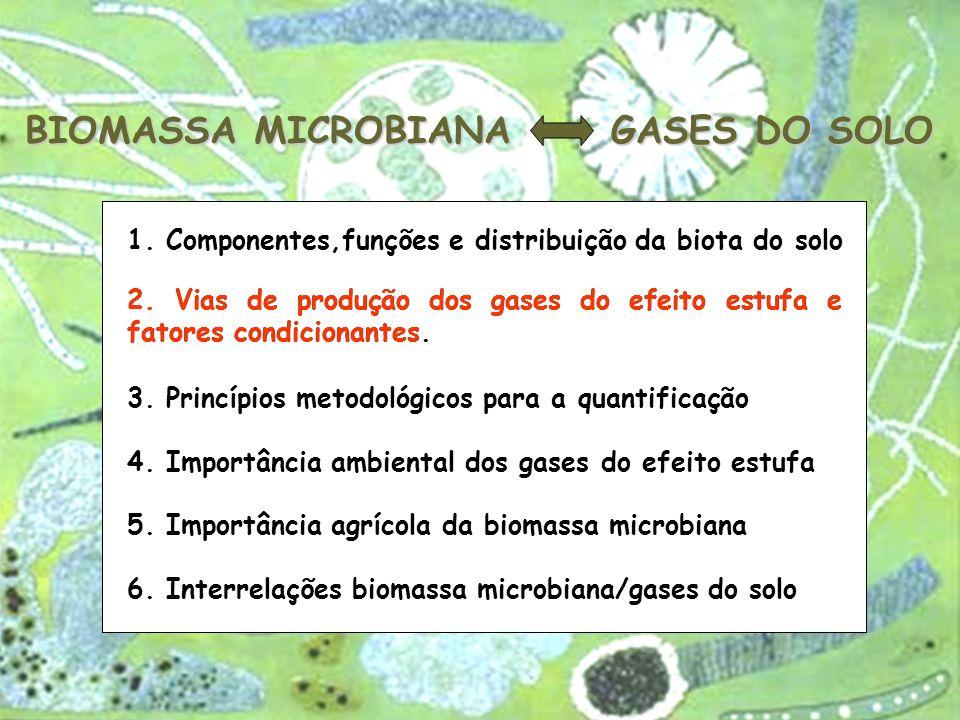 BIOMASSA MICROBIANA GASES DO SOLO 6. Interrelações biomassa microbiana/gases do solo 2. Vias de produção dos gases do efeito estufa e fatores condicio