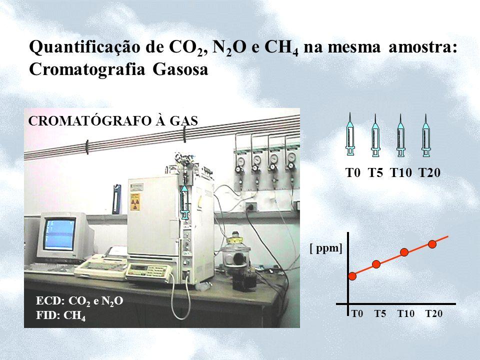 Quantificação de CO 2, N 2 O e CH 4 na mesma amostra: Cromatografia Gasosa CROMATÓGRAFO À GAS ECD: CO 2 e N 2 O FID: CH 4 T0 T5 T10 T20 [ ppm]