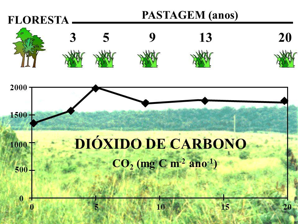 0 500 1000 1500 2000 05101520 FLORESTA PASTAGEM (anos) 3 5 9 13 20 DIÓXIDO DE CARBONO CO 2 (mg C m -2 ano -1 )