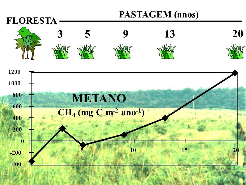 FLORESTA PASTAGEM (anos) 3 5 9 13 20 -400 -200 0 200 400 600 800 1000 1200 5101520 METANO CH 4 (mg C m -2 ano -1 )
