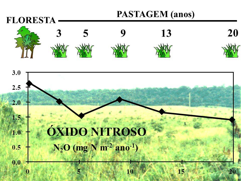 FLORESTA PASTAGEM (anos) 3 5 9 13 20 0.0 0.5 1.0 1.5 2.0 2.5 3.0 05101520 ÓXIDO NITROSO N 2 O (mg N m -2 ano -1 )