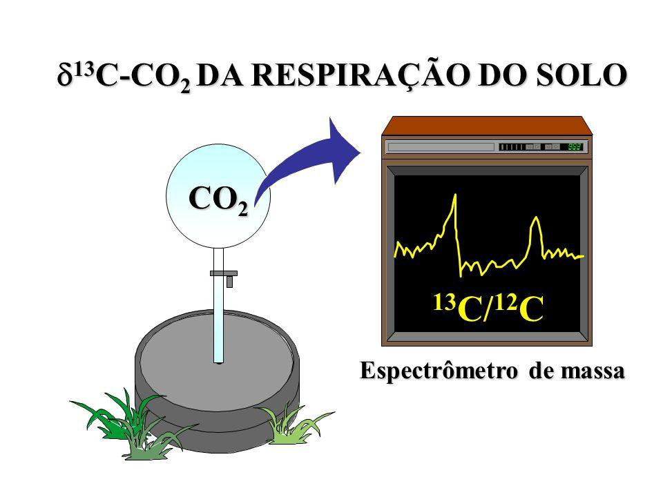 13 C-CO 2 DA RESPIRAÇÃO DO SOLO 13 C-CO 2 DA RESPIRAÇÃO DO SOLO CO 2 Espectrômetro de massa 13 C/ 12 C