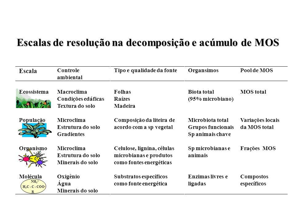 Escala Controle ambiental Tipo e qualidade da fonteOrgansimosPool de MOS EcossistemaMacroclima Condições edáficas Textura do solo Folhas Raízes Madeir