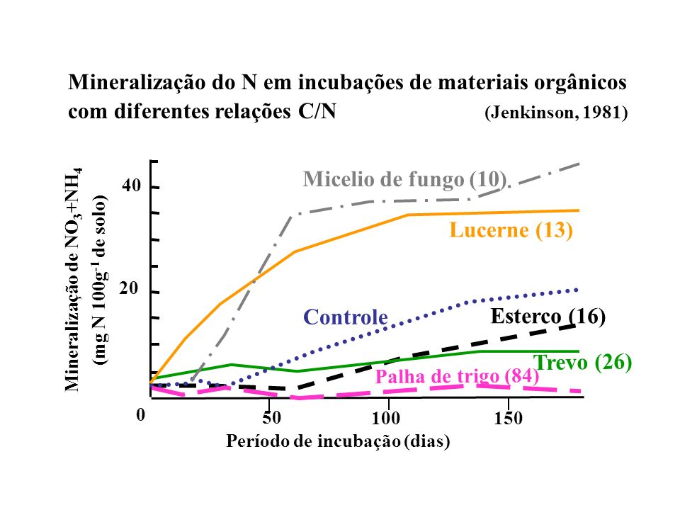 Mineralização do N em incubações de materiais orgânicos com diferentes relações C/N (Jenkinson, 1981) Período de incubação (dias) Mineralização de NO