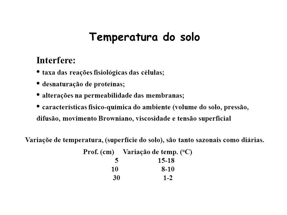 Temperatura do solo Interfere: taxa das reações fisiológicas das células; desnaturação de proteínas; alterações na permeabilidade das membranas; carac