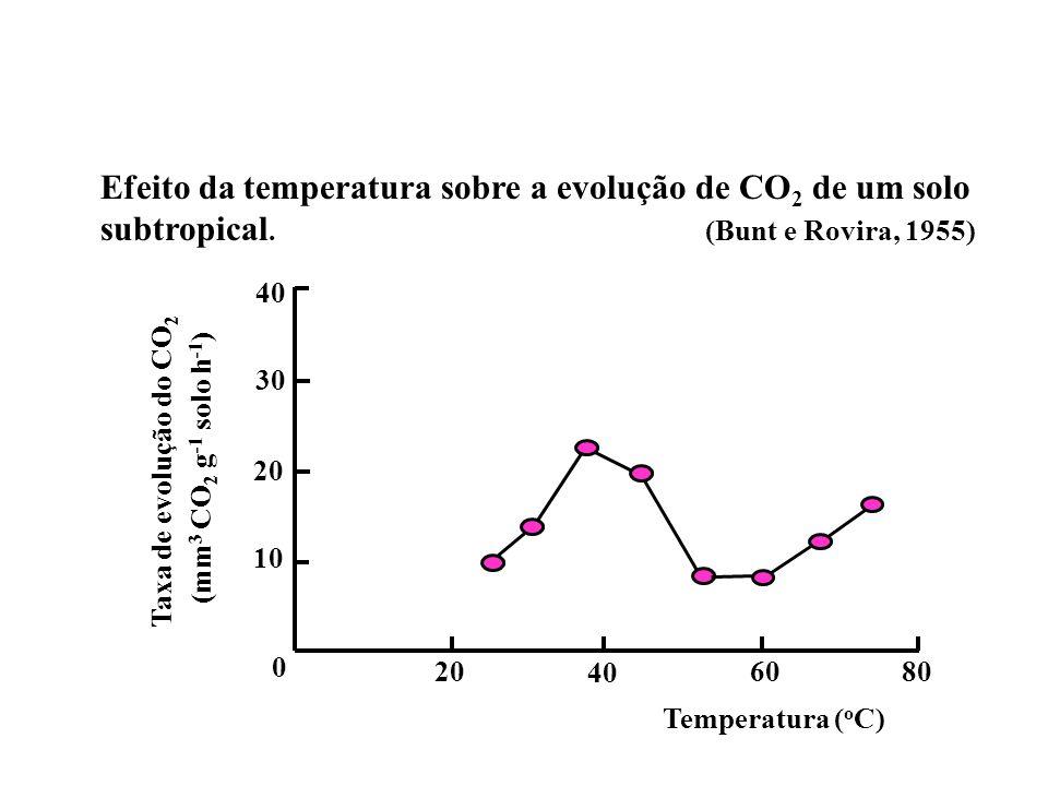Efeito da temperatura sobre a evolução de CO 2 de um solo subtropical. (Bunt e Rovira, 1955) 0 10 20 30 40 20 40 6080 Temperatura ( o C) Taxa de evolu