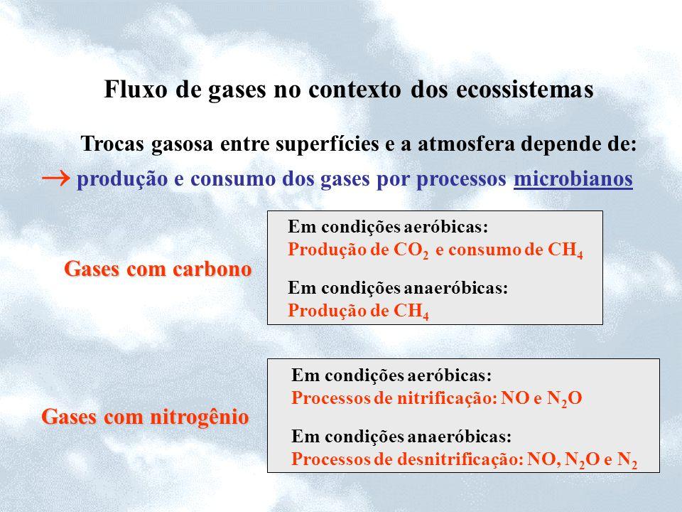 Fluxo de gases no contexto dos ecossistemas Trocas gasosa entre superfícies e a atmosfera depende de: produção e consumo dos gases por processos micro