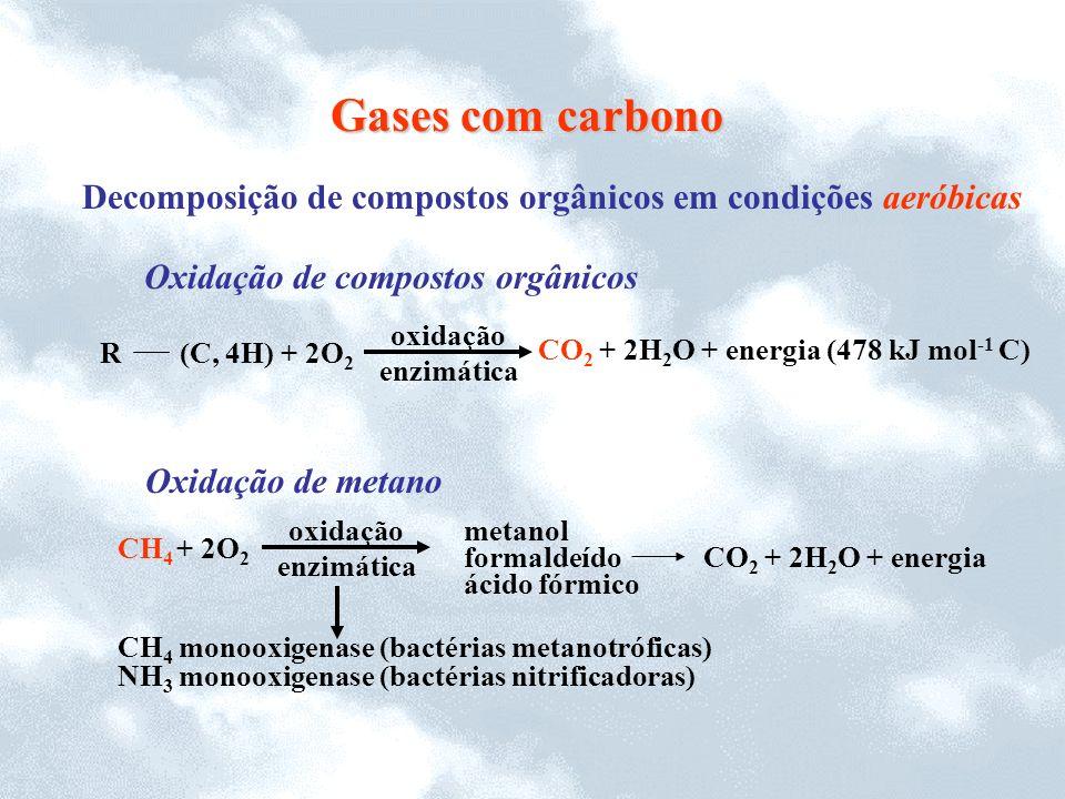 Decomposição de compostos orgânicos em condições aeróbicas Gases com carbono Oxidação de metano CH 4 + 2O 2 CH 4 monooxigenase (bactérias metanotrófic
