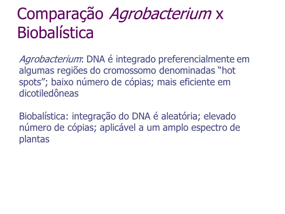 Vetores para transformação via Agrobacterium série pCAMBIA pBIN19, pBINPLUS pBI121 etc, etc, etc