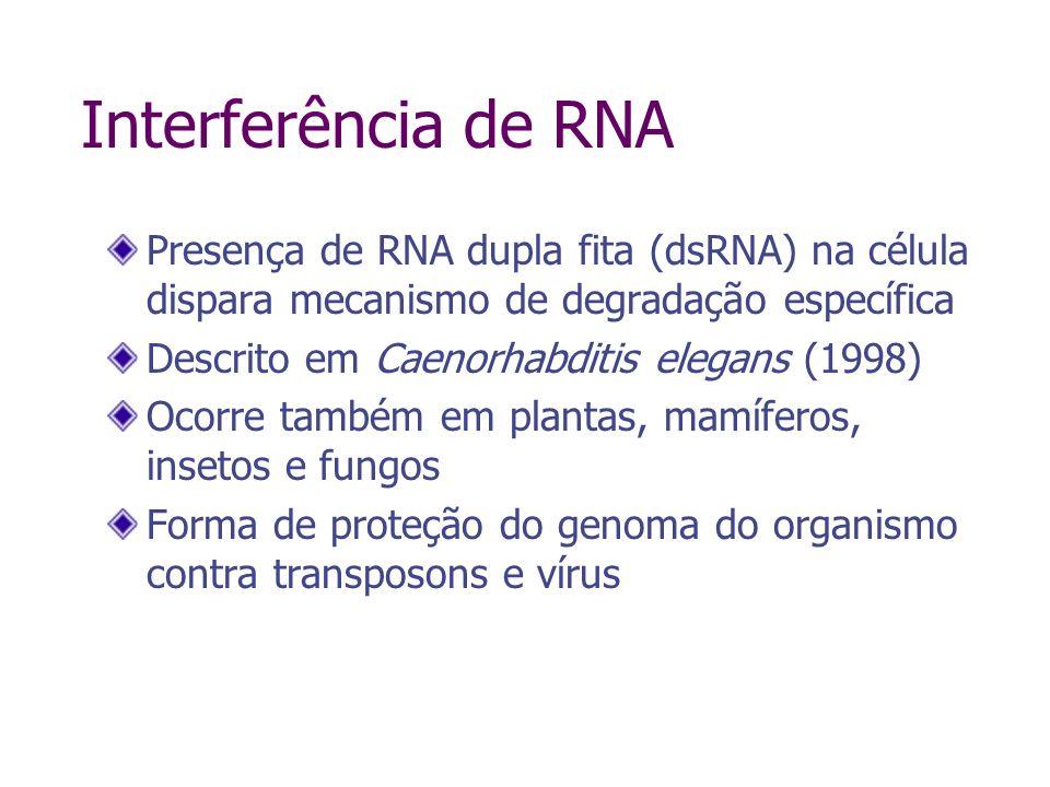 RNA-induced silencing complex Novina & Sharp, Nature 430:161, 2004 short interfering RNA