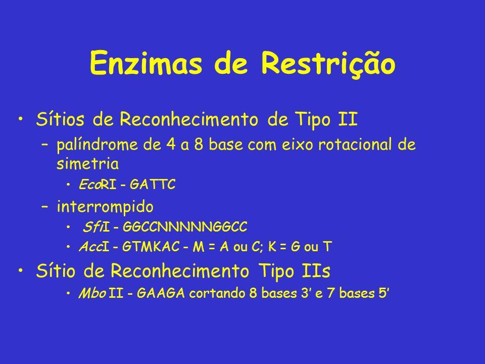 Enzimas de Restrição Sítios de Reconhecimento de Tipo II –palíndrome de 4 a 8 base com eixo rotacional de simetria EcoRI - GATTC –interrompido SfiI -