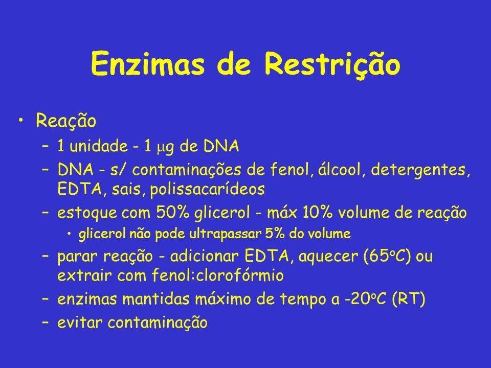 Enzimas de Restrição Reação –1 unidade - 1 g de DNA –DNA - s/ contaminações de fenol, álcool, detergentes, EDTA, sais, polissacarídeos –estoque com 50