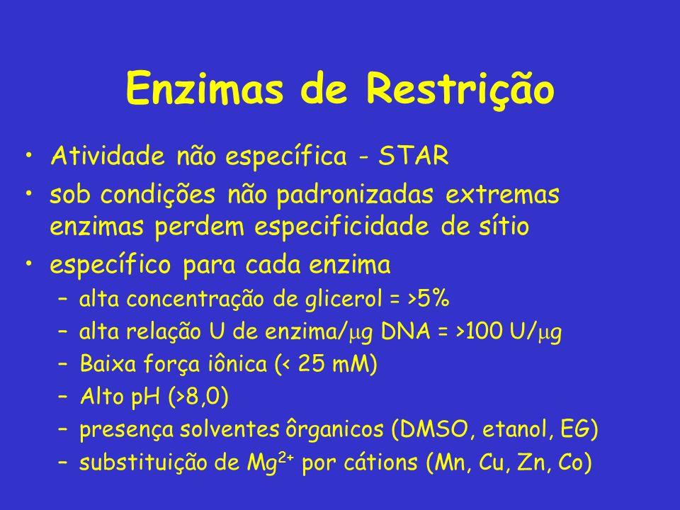 Enzimas de Restrição Atividade não específica - STAR sob condições não padronizadas extremas enzimas perdem especificidade de sítio específico para ca