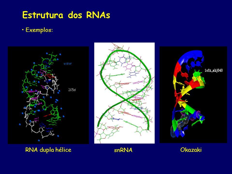 Estrutura dos RNAs Exemplos: RNA dupla hélice snRNA Okazaki