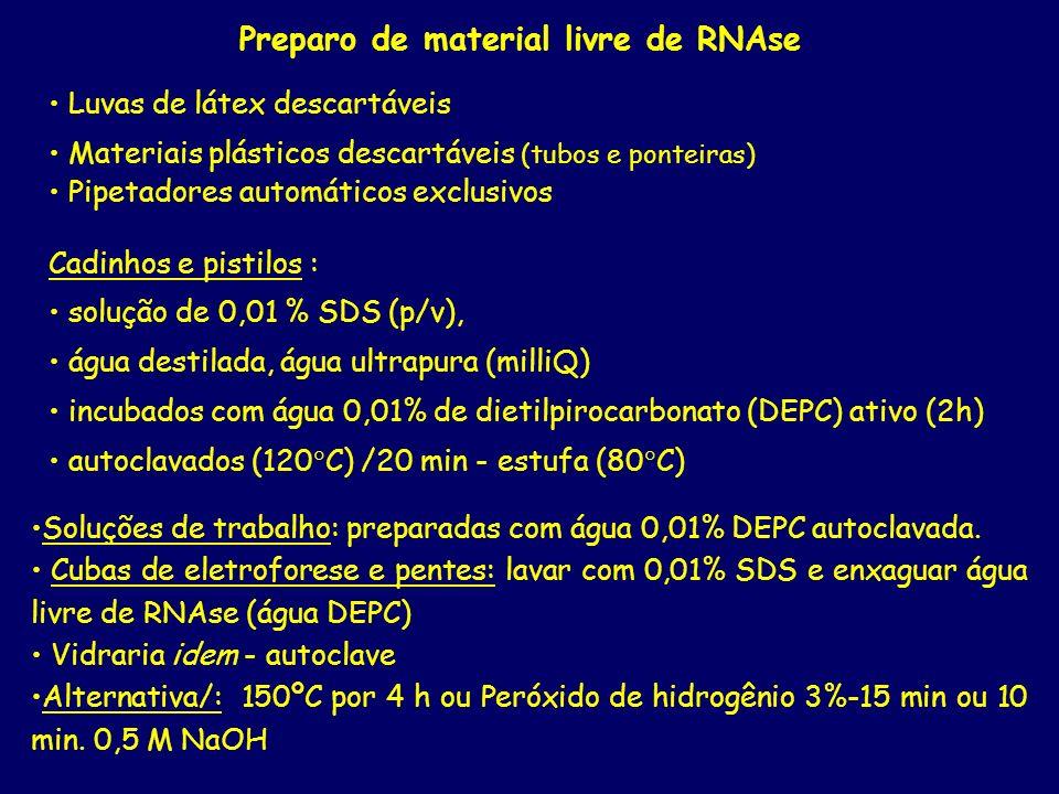 Preparo de material livre de RNAse Luvas de látex descartáveis Materiais plásticos descartáveis (tubos e ponteiras) Pipetadores automáticos exclusivos
