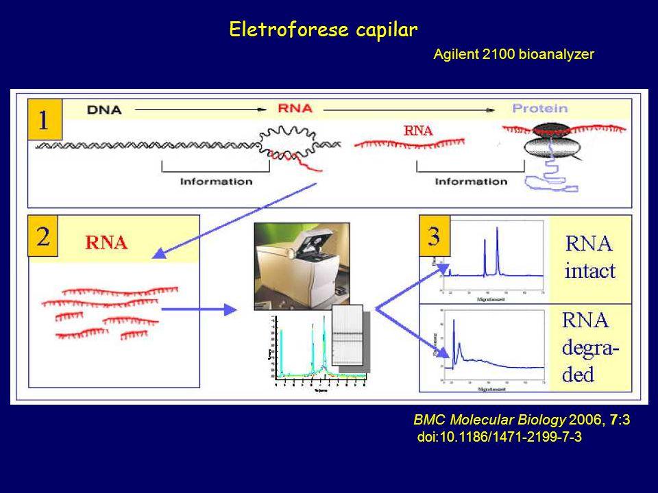 BMC Molecular Biology 2006, 7:3 doi:10.1186/1471-2199-7-3 Eletroforese capilar Agilent 2100 bioanalyzer