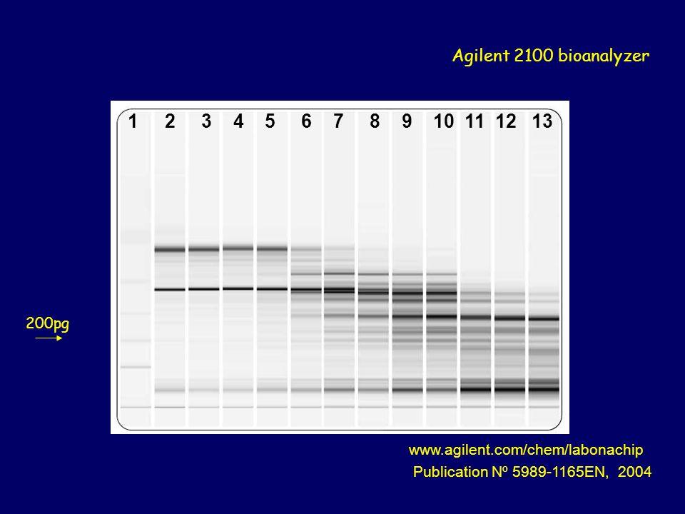 1 2 3 4 5 6 7 8 9 10 11 12 13 www.agilent.com/chem/labonachip Publication Nº 5989-1165EN, 2004 Agilent 2100 bioanalyzer 200pg