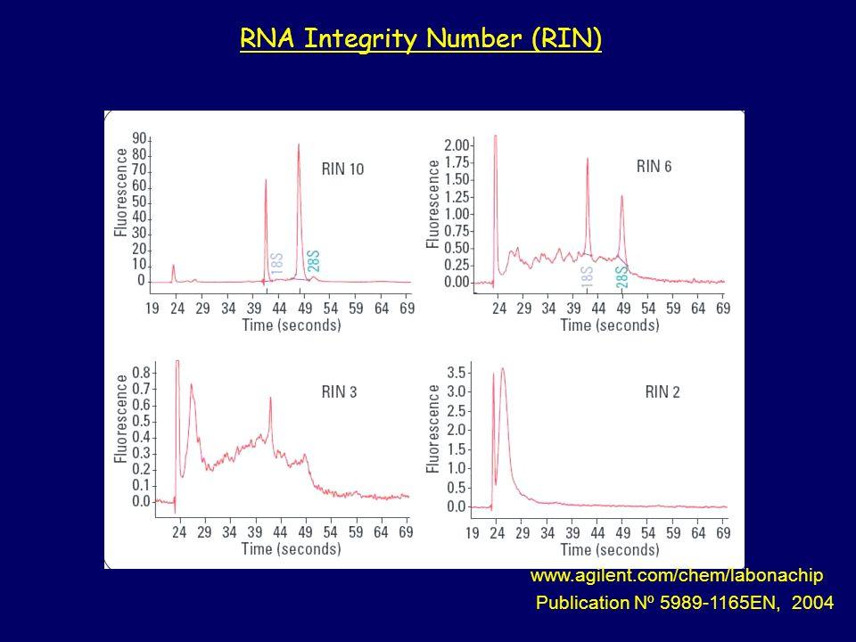www.agilent.com/chem/labonachip Publication Nº 5989-1165EN, 2004 RNA Integrity Number (RIN)