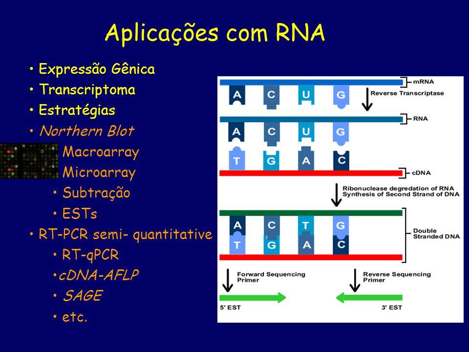 Aplicações com RNA Expressão Gênica Transcriptoma Estratégias Northern Blot Macroarray Microarray Subtração ESTs RT-PCR semi- quantitative RT-qPCR cDN