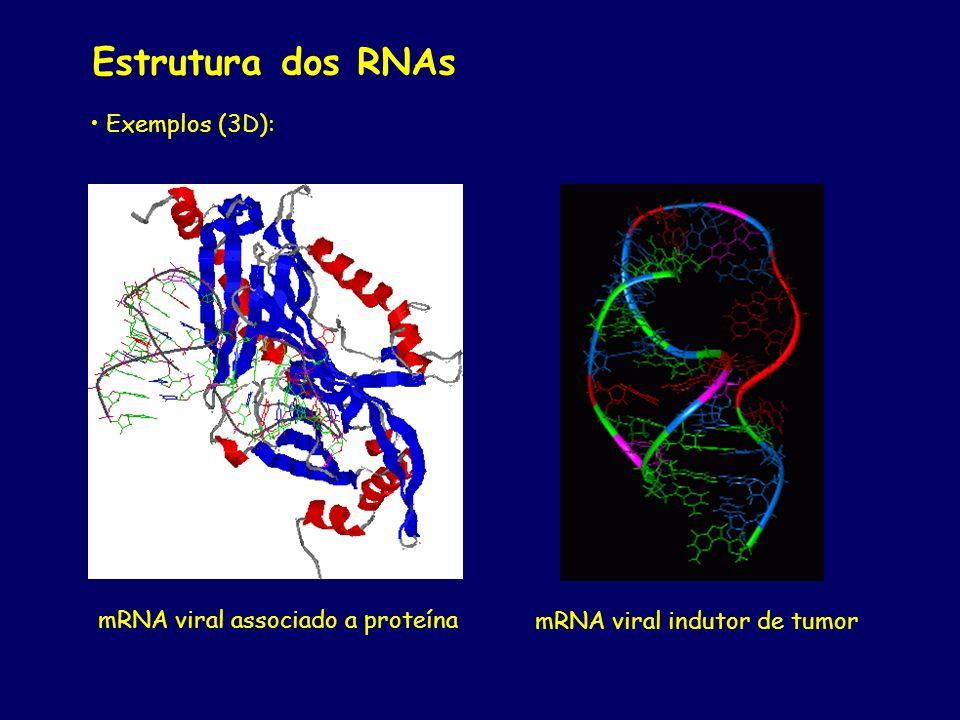 Estrutura dos RNAs Exemplos (3D): mRNA viral associado a proteína mRNA viral indutor de tumor