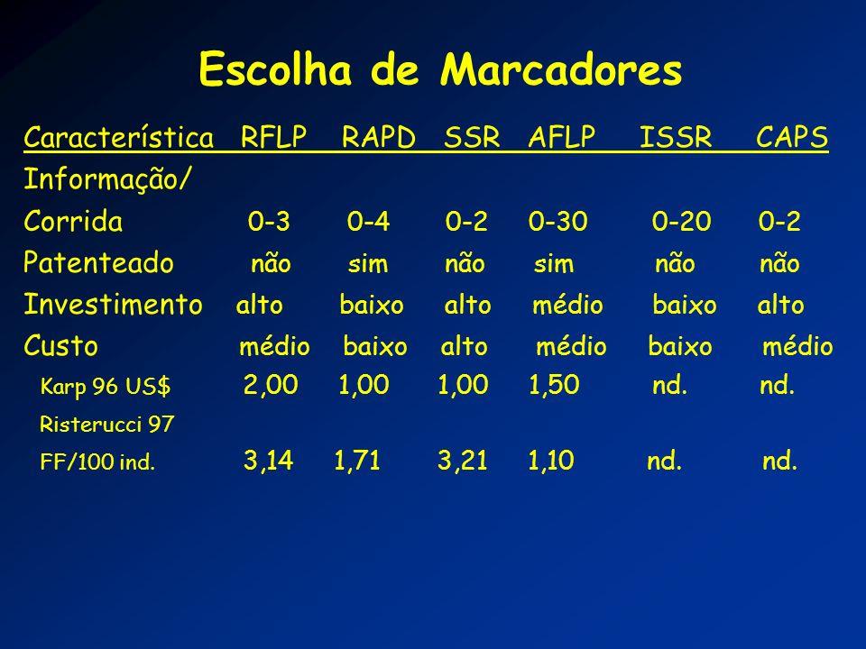 Escolha de Marcadores Característica RFLP RAPD SSR AFLP ISSR CAPS Informação/ Corrida 0-3 0-4 0-2 0-30 0-20 0-2 Patenteado não sim não sim não não Inv