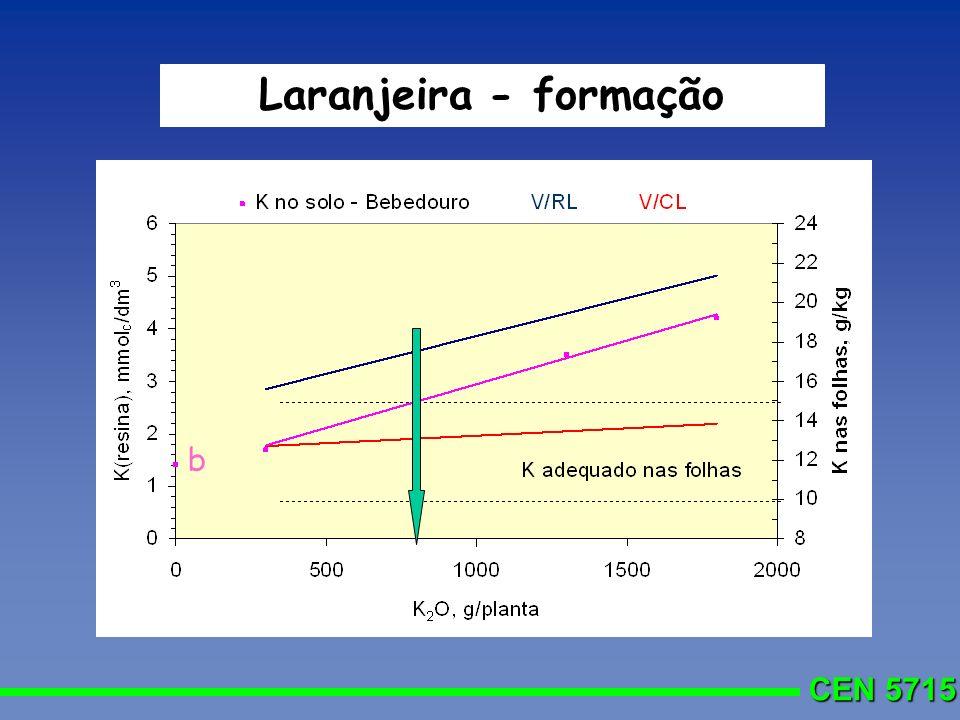 CEN 5715 Laranjeira - formação b