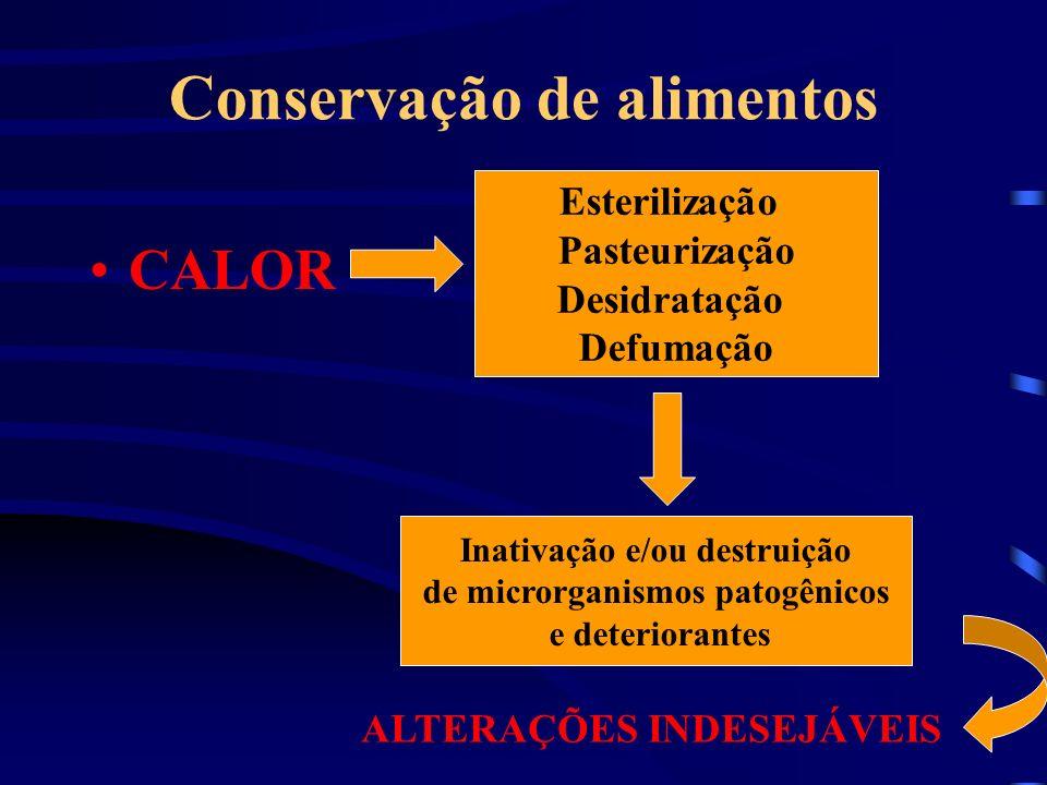 Conservação de alimentos CALOR Esterilização Pasteurização Desidratação Defumação Inativação e/ou destruição de microrganismos patogênicos e deteriora