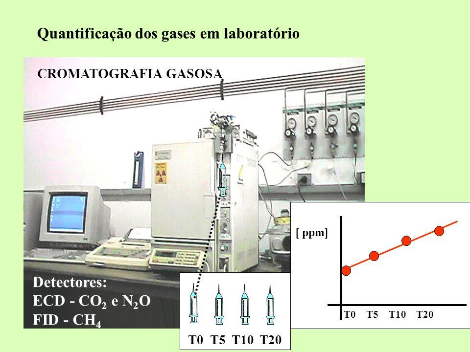 Quantificação dos gases em laboratório CROMATOGRAFIA GASOSA Detectores: ECD - CO 2 e N 2 O FID - CH 4 T0 T5 T10 T20 [ ppm]