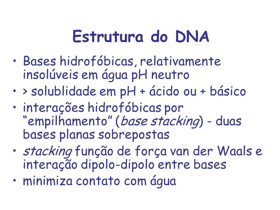Estrutura do DNA Bases hidrofóbicas, relativamente insolúveis em água pH neutro > solublidade em pH + ácido ou + básico interações hidrofóbicas por em
