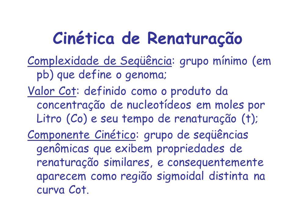 Cinética de Renaturação Complexidade de Seqüência: grupo mínimo (em pb) que define o genoma; Valor Cot: definido como o produto da concentração de nuc
