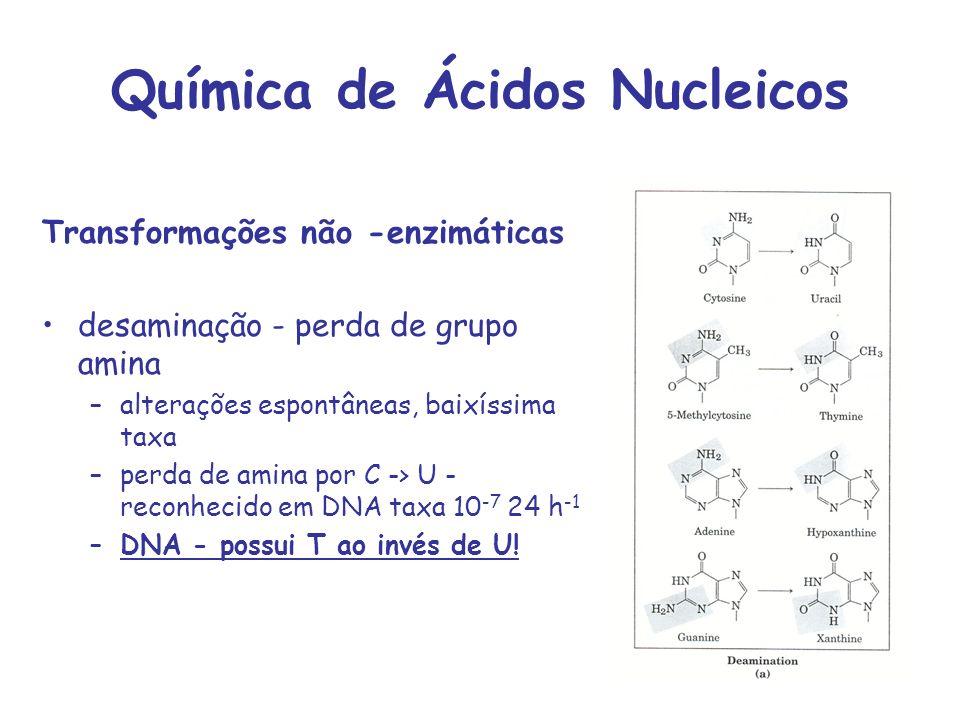 Química de Ácidos Nucleicos Transformações não -enzimáticas desaminação - perda de grupo amina –alterações espontâneas, baixíssima taxa –perda de amin