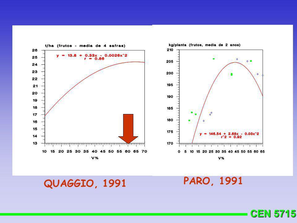 CEN 5715 QUAGGIO, 1991 PARO, 1991