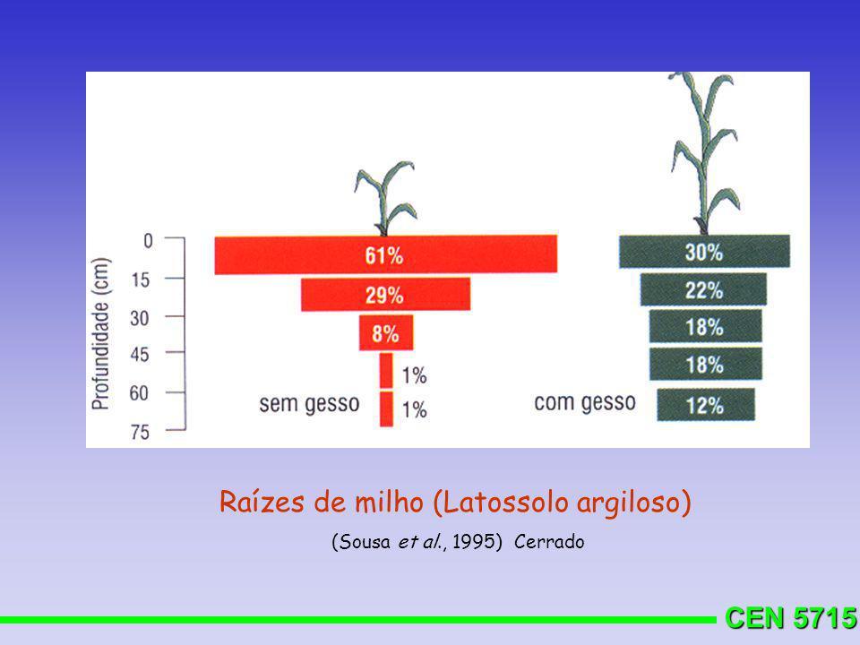 CEN 5715 Raízes de milho (Latossolo argiloso) (Sousa et al., 1995) Cerrado