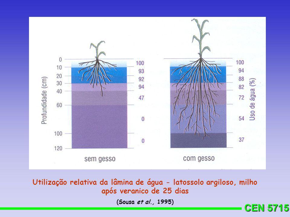 CEN 5715 Utilização relativa da lâmina de água - latossolo argiloso, milho após veranico de 25 dias (Sousa et al., 1995)