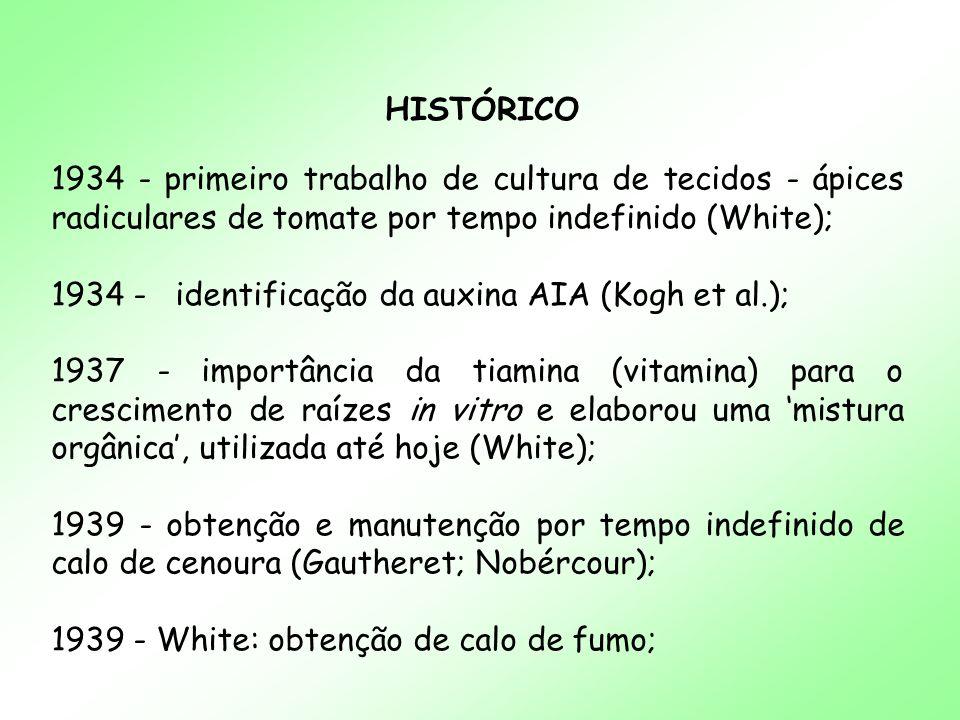 HISTÓRICO 1934 - primeiro trabalho de cultura de tecidos - ápices radiculares de tomate por tempo indefinido (White); 1934 - identificação da auxina A