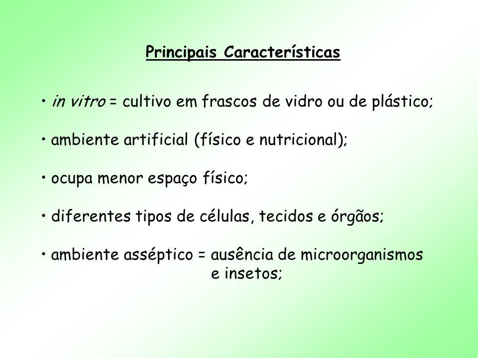 Principais Características in vitro = cultivo em frascos de vidro ou de plástico; ambiente artificial (físico e nutricional); ocupa menor espaço físic