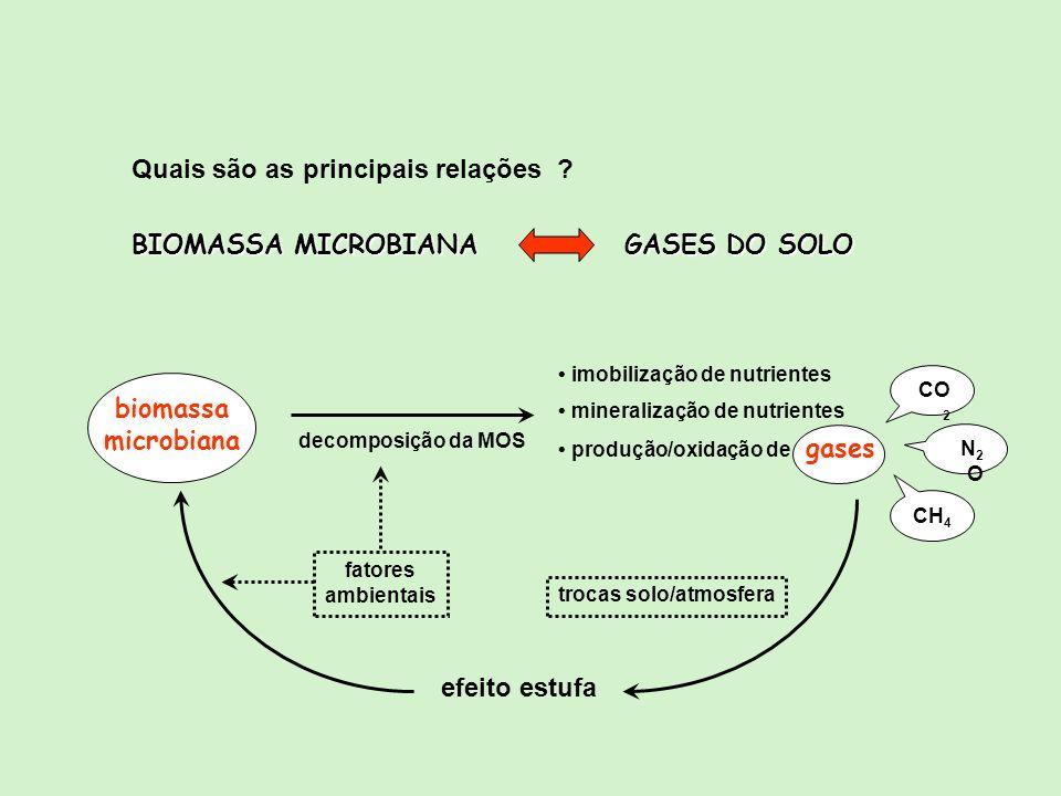 BIOMASSA MICROBIANA GASES DO SOLO Quais são as principais relações ? biomassa microbiana decomposição da MOS imobilização de nutrientes mineralização