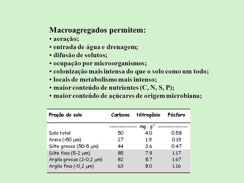 Macroagregados permitem: aeração; entrada de água e drenagem; difusão de solutos; ocupação por microorganismos; colonização mais intensa do que o solo