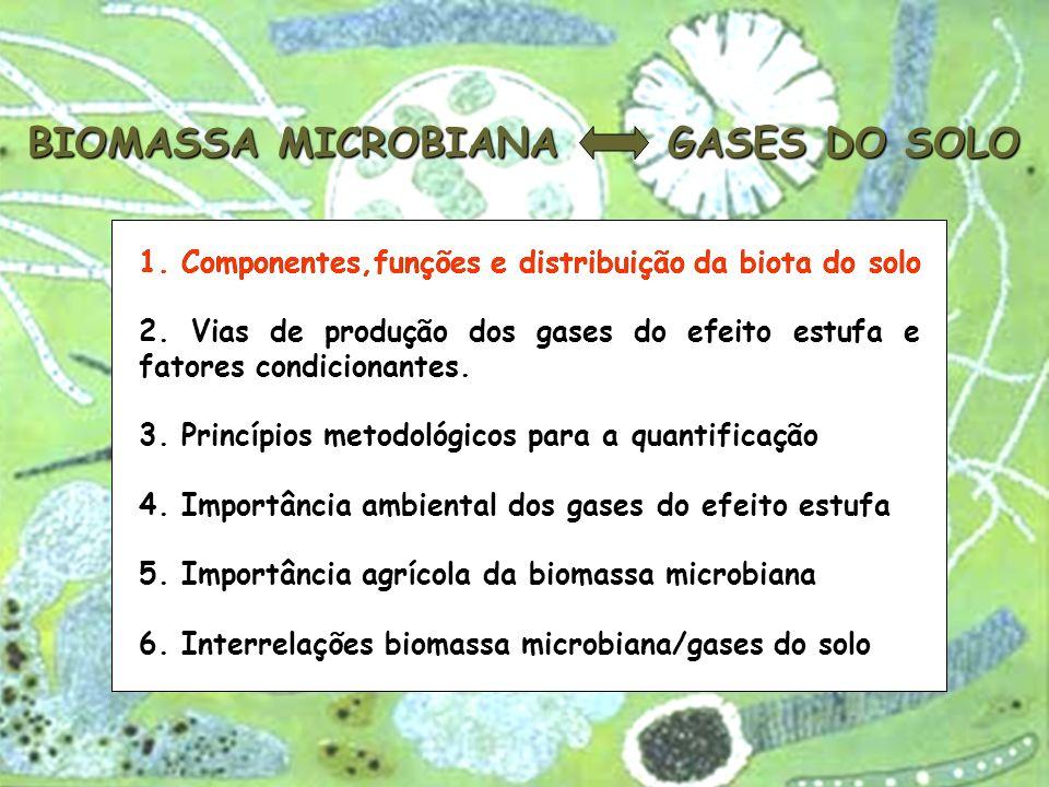 Estimativa do carbono, nitrogênio e fósforo (média de 4 repetições ± dp) da biomassa microbiana presente na serapilheira e no solo de uma cronossequência floresta/pastagem.
