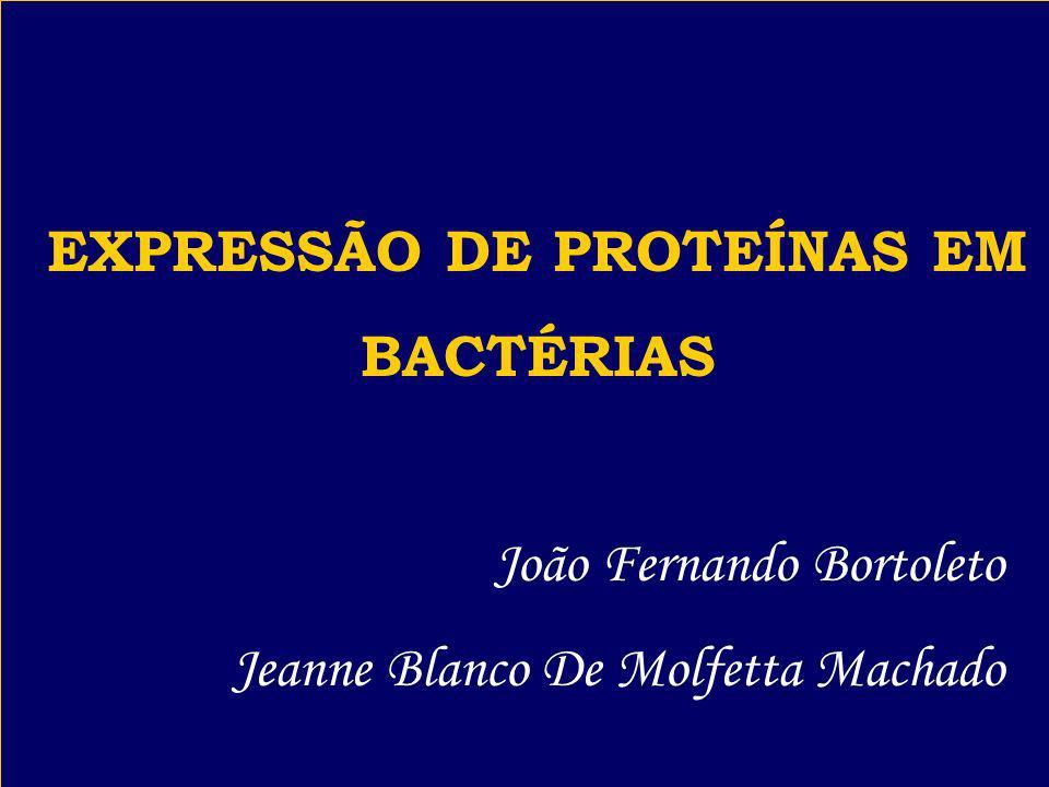 EXPRESSÃO DE PROTEÍNAS EM BACTÉRIAS João Fernando Bortoleto Jeanne Blanco De Molfetta Machado