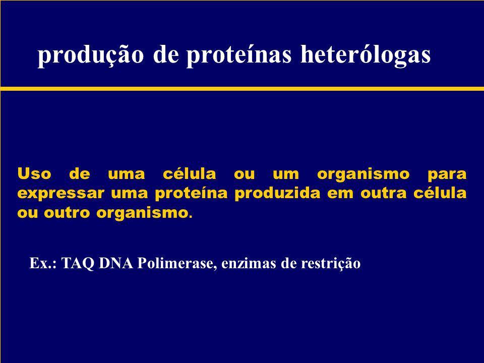 Uso de uma célula ou um organismo para expressar uma proteína produzida em outra célula ou outro organismo. Ex.: TAQ DNA Polimerase, enzimas de restri
